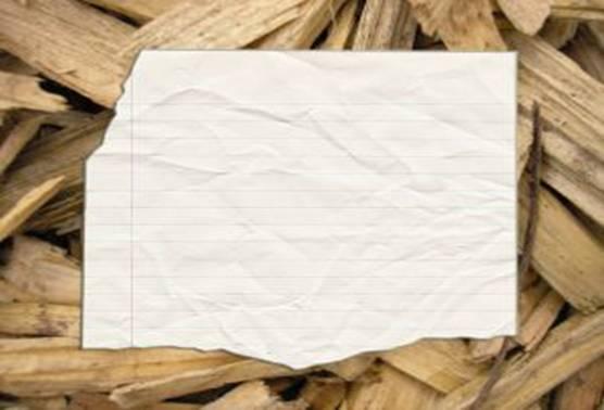 производство картон целлюлоза